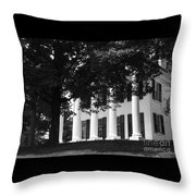 Vintage Splendor Throw Pillow