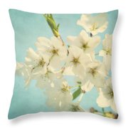 Vintage Spring Blossoms Throw Pillow