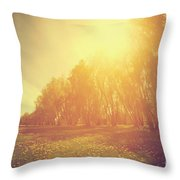 Vintage Spring Sunny Park Throw Pillow