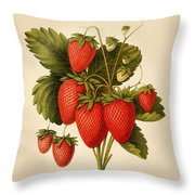 Vintage Strawberries Throw Pillow