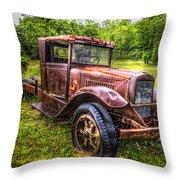 Vintage Treasure Throw Pillow