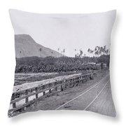 Vintage Waikiki Throw Pillow