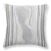 Vintage Wood Panel Throw Pillow