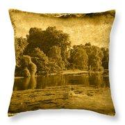 Vintage06 Throw Pillow
