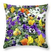 Viola In The Spring Are Especially Beautiful. Throw Pillow
