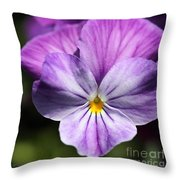 Viola Named Columbine Throw Pillow