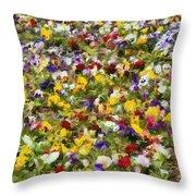 Viola Tricolor Throw Pillow