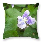 Violet 1 Throw Pillow