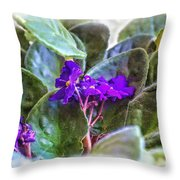 Violet Throw Pillow by Beauty For God