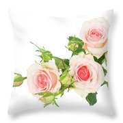 Garden Roses And Buds Throw Pillow