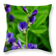 Violet Blue Throw Pillow