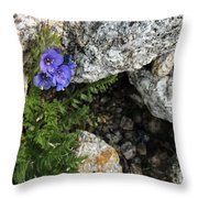 Violet Climbing  Throw Pillow
