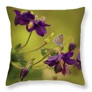 Violet Columbines Throw Pillow