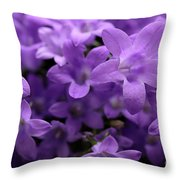 Violet Dream IIi Throw Pillow