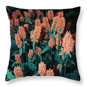 Violet Dream On Throw Pillow