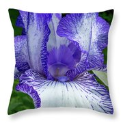 Violet Iris Throw Pillow
