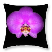 Violet Orchid On Black. Fantasy 7.21.17 Throw Pillow