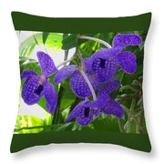 Violet Orchid Trio Throw Pillow