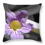 Violet Trumpet Vine Selective Color Throw Pillow