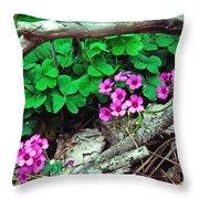 Violet Wood Sorrel Throw Pillow