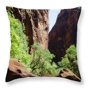 Virgin River Throw Pillow