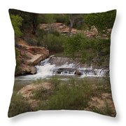 Virgin River Hike - 2  Throw Pillow