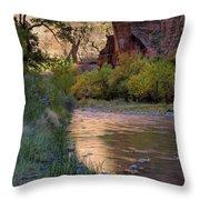 Virgin River Reflection Throw Pillow