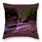 Virgin River The Narrows Zion National Park Throw Pillow by Scott McGuire