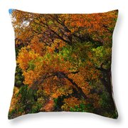 Virgin River Triptych Right Panel Throw Pillow