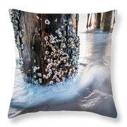 Virginia Beach Pier Throw Pillow