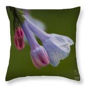 Virginia Bluebell Throw Pillow