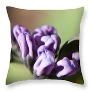 Virginia Bluebell Buds Throw Pillow