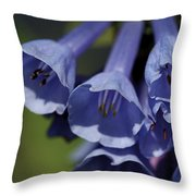 Virginia Bluebells Throw Pillow