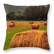 Virginia Evening Throw Pillow