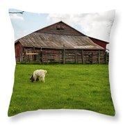 Virginia Farmyard Throw Pillow