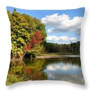 Virginia Kendall Park Throw Pillow by Kristin Elmquist