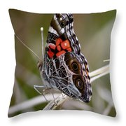 Virginia Lady Butterfly Side View Throw Pillow