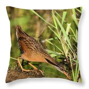 Virginia Rail Throw Pillow