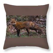 Virginian Red Fox Throw Pillow