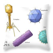 Virus Shapes, Illustration Throw Pillow