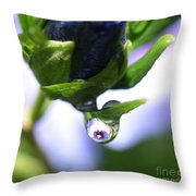 Vision In A Raindrop Throw Pillow