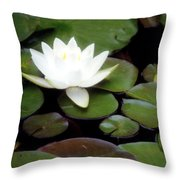 Vision Of Paradise Throw Pillow