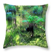 Vision Restored Throw Pillow