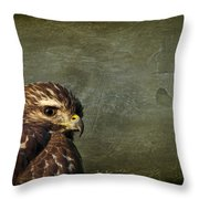 Visions Of Solitude Throw Pillow