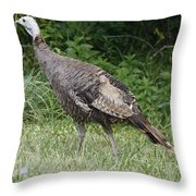 Visions Of Turkey  Throw Pillow