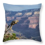visit to Grand Canyon  Throw Pillow