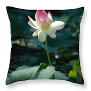 Visit To Lilly Pond 2 Throw Pillow