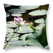 Visit To Lilly Pond Throw Pillow