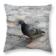 Visiting The Old City Throw Pillow