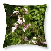 Visitor Throw Pillow